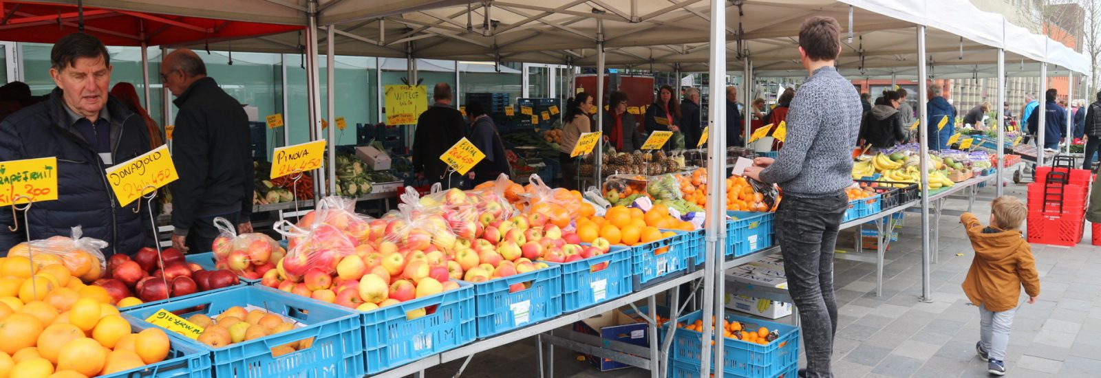 HOLLANDSE TROSTOMATEN 1 KILO €1,—