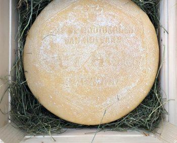 NIEUW! UUT HOOI kaas uit de hooibergen van Nederland±